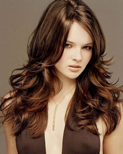 Hair Color together with Long Dark Brown Hair With Highlights. on best ...