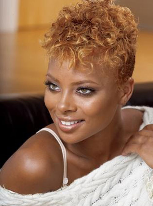 Superb Short Natural Hairstyles For Black Womenghantapic Hairstyles For Women Draintrainus