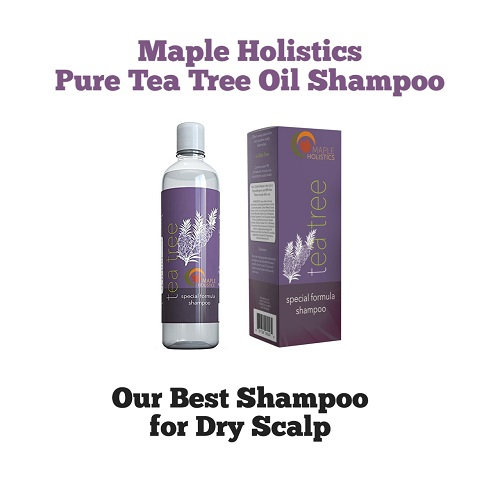 Maple Holistics Shampoo